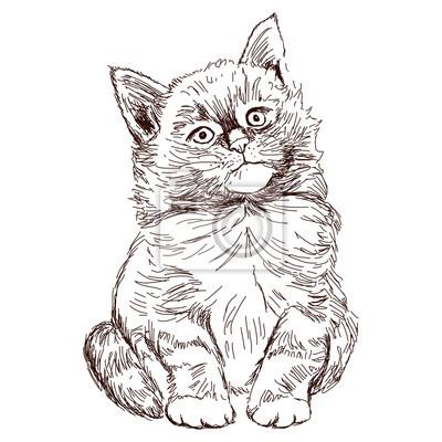 Un Petit Chaton Drôle Cat Assis Regarde Bien Dessin Dessiné
