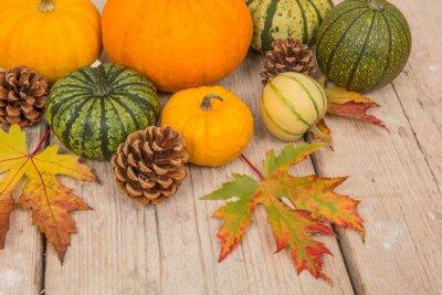 Variété de vert, orange, Citrouilles, pin, pommes, feuilles, vu, au-dessus, blanc, lavé, échafaudage, bois, planche, fond
