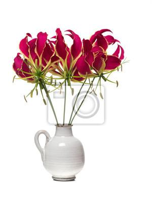 Vase blanc avec un bouquet de lys de gloire des fleurs isolé sur un fond blanc