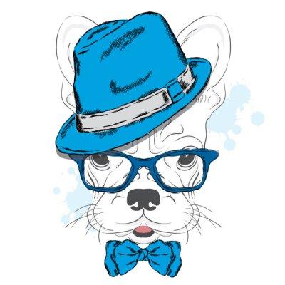 Papiers peints Vecteur de bouledogue français. Chiot de bande dessinée. Un chien dans un chapeau et des lunettes de soleil. Chiot mignon. Branché. Garçon. Pedigree chien.