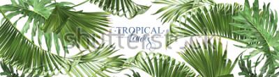 Papiers peints Vecteur horizontal tropical laisse des bannières sur fond blanc. Design botanique exotique pour cosmétiques, spa, parfums, produits de santé, arômes, faire-part de mariage. Meilleur comme bannière web