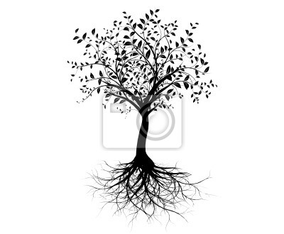 Arbre Avec Racine vecteur série, jeune arbre avec racines - larbre avec des racines