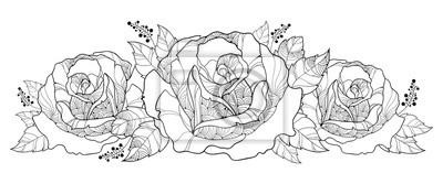Coloriage Guirlande Fleurs.Papiers Peints Vector Dessin Avec Bouquet De Contour Rose Fleur Isole Sur Fond