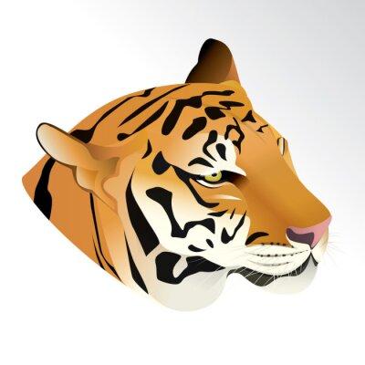Papiers peints Vector illustration de tête de tigre portrait isolé sur fond blanc.