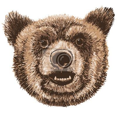 Vector illustration marqueurs animaux de la forêt dessinés à la main: ours