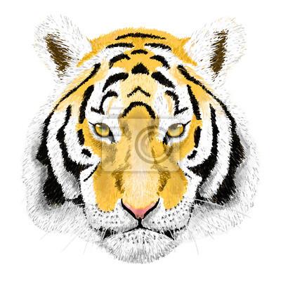Vector portrait d'un tigre. Beau visage gros chat.
