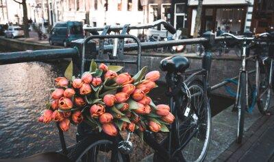 Papiers peints Vélo avec des tulipes