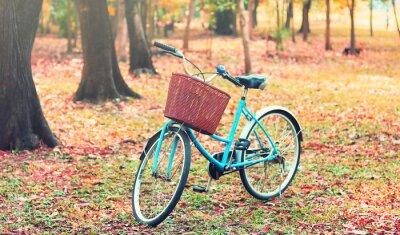Papiers peints Vélo pour les loisirs. (Focus au panier) en rétro ton vintage
