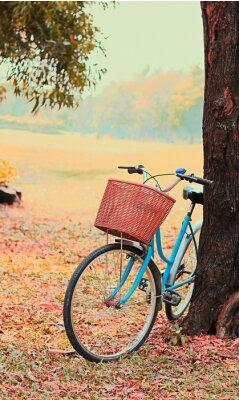 Papiers peints Vélo pour les loisirs. (Focus au panier) ton vintage rétro
