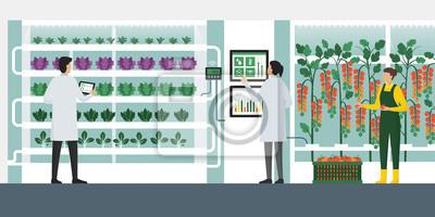 Papiers peints Vertical farming hydroponics