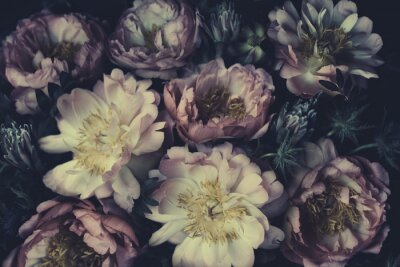 Papiers peints Vintage bouquet of beautiful peonies on black. Floristic decoration. Floral background. Baroque old fashiones style. Natural flowers pattern wallpaper or greeting card