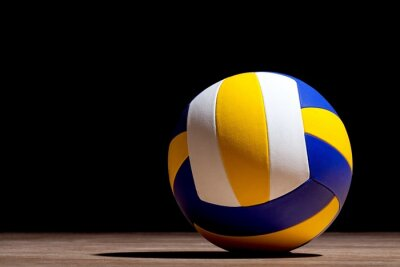Papiers peints Volley.