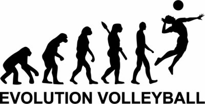 Papiers peints Volley-ball Evolution