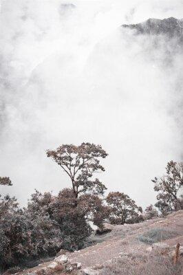 Papiers peints Vue De Machu Picchu