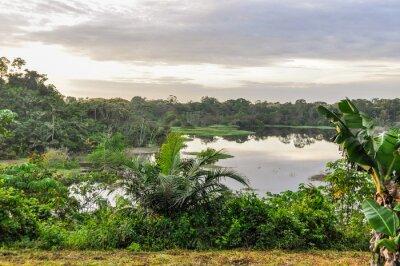 Papiers peints Vue du lac dans la forêt amazonienne, Manaos, Brésil