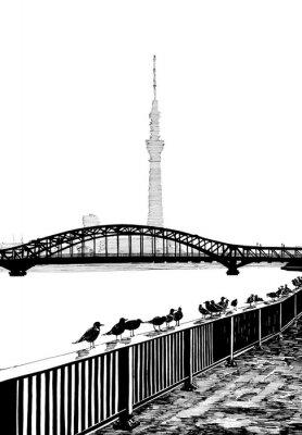 Papiers peints Vue du pont Sumida