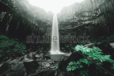 Papiers peints Vue imprenable sur la cascade de Svartifoss. Image panoramique du magnifique paysage naturel. Attraction touristique populaire. Emplacement parc national de Skaftafell, glacier de Vatnajokull, Islande