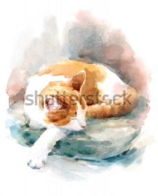 Papiers peints Watercolor Cat Sleeping on the Pillow Hand Painted Pet Portrait Animal Illustration