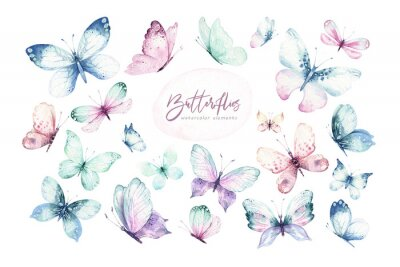 Papiers peints Watercolor colorful butterflies, isolated butterfly on white background. blue, yellow, pink and red butterfly spring illustration.