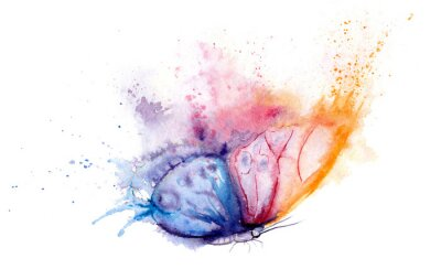 Papiers peints watercolor drawing - butterfly made of blots and splashes