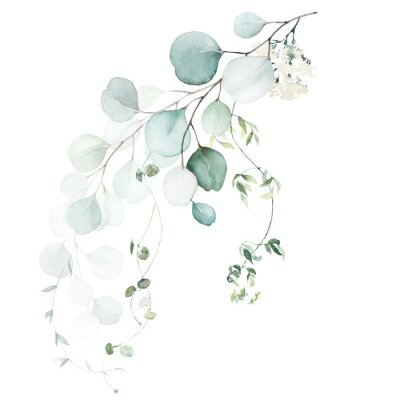 Papiers peints Watercolor floral illustration bouquet - green leaf branch collection, for wedding stationary, greetings, wallpapers, fashion, background. Eucalyptus, olive, green leaves, etc.