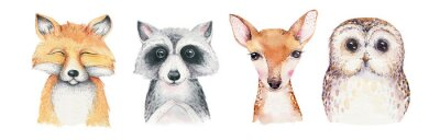 Papiers peints Watercolor set of forest cartoon isolated cute baby fox, deer, raccoon and owl animal with flowers. Nursery woodland illustration. Bohemian boho drawing for nursery poster, pattern