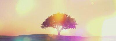 Papiers peints Widescreen, coucher soleil, arbre, paysage, retro, effet