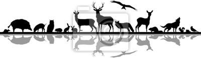 Papiers peints Wild Animals Forest Landscape Vector Silhouette