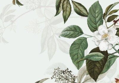 Papiers peints Wild rose frame