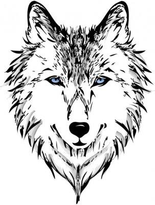 Papiers peints Wolf head