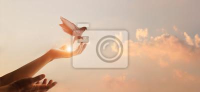 Papiers peints Woman praying and free bird enjoying nature on sunset background, hope concept