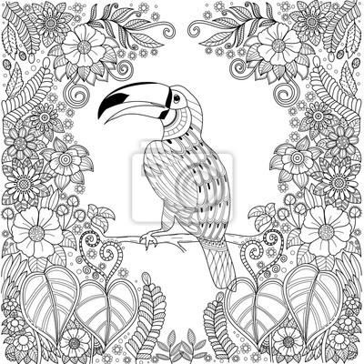 Papiers Peints Zentangle Oiseau Calao Tropical Dans La Jungle Avec Des Fleurs