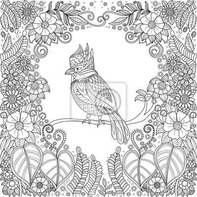 Papiers Peints Zentangle Oiseau Tropical Dans La Jungle Avec Des Fleurs Pour