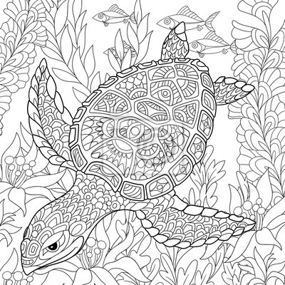 Coloriage Adulte Tortue.Zentangle Stylise Dessin Anime Tortue Natation Mer Algues
