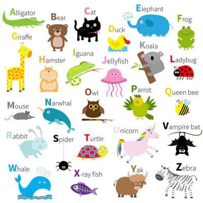 Papiers peints Zoo animal alphabet. Jeu de caractères mignon de bande dessinée. Isolé. Conception blanche. Éducation des enfants bébés. Alligator, ours, chat, canard, éléphant, grenouille, girafe, hamster, iguane, m