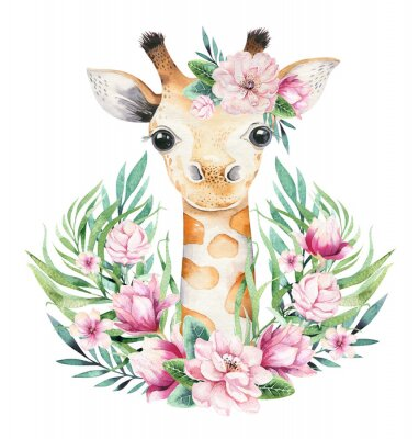 Posters A poster with a baby giraffe. Watercolor cartoon giraffetropical animal illustration. Jungle exotic summer print.