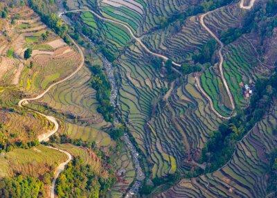 Posters Aérien, vue, paddy, champs, Pokhara