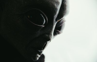 Posters Alien creature has a message for humans. Grey kind humanoid from an other planet portrait series.