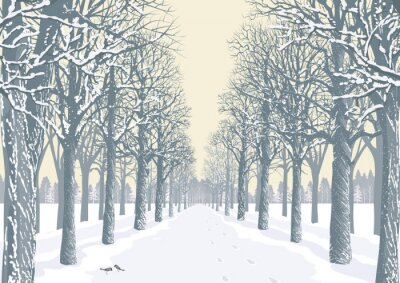 Posters Alley avec des arbres enneigés silhouettes dans un parc