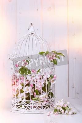 Posters Apple blossom rempli cage antique sur fond de bois