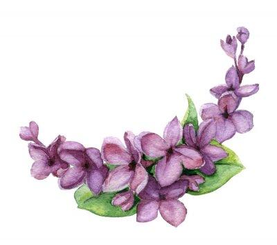 Aquarelle Lilas Fleur Invitation Clip Art Affiches Murales Posters