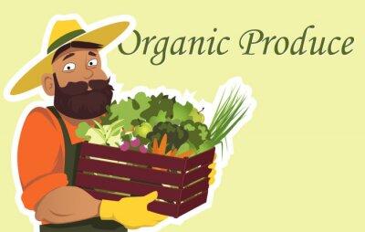Posters Bearded fermier ou jardinier dans un chapeau tenant une boîte en bois rempli de légumes frais et de fruits, copie espace sur la droite, EPS 8 illustration vectorielle, pas de transparents
