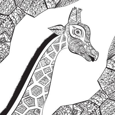 Posters Belle girafe adulte. Illustration dessinée à la main de girafe ornementale. Isolé girafe sur fond blanc.