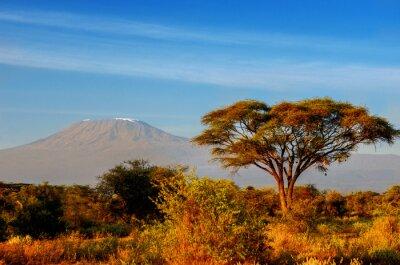 Posters Belle montagne du Kilimandjaro après le lever du soleil le matin, le Kenya, le parc national d'Amboseli, Afrique