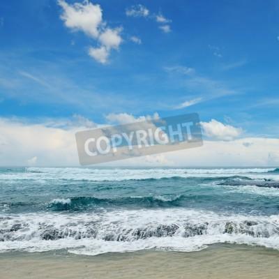 Posters Belles vagues dans la mer