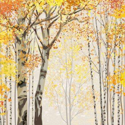 Posters Birch Grove dans le temps de l'automne
