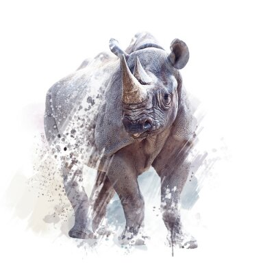Posters black rhinoceros watercolor on white background