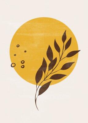 Posters Botanical vintage print boho sun moon minimalist wall art abstract home decor