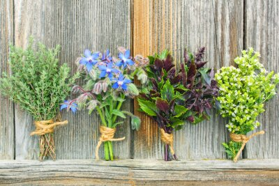 Posters bouquet d'herbes