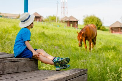 Posters boy sits on the steps and watches a horse in the countryside